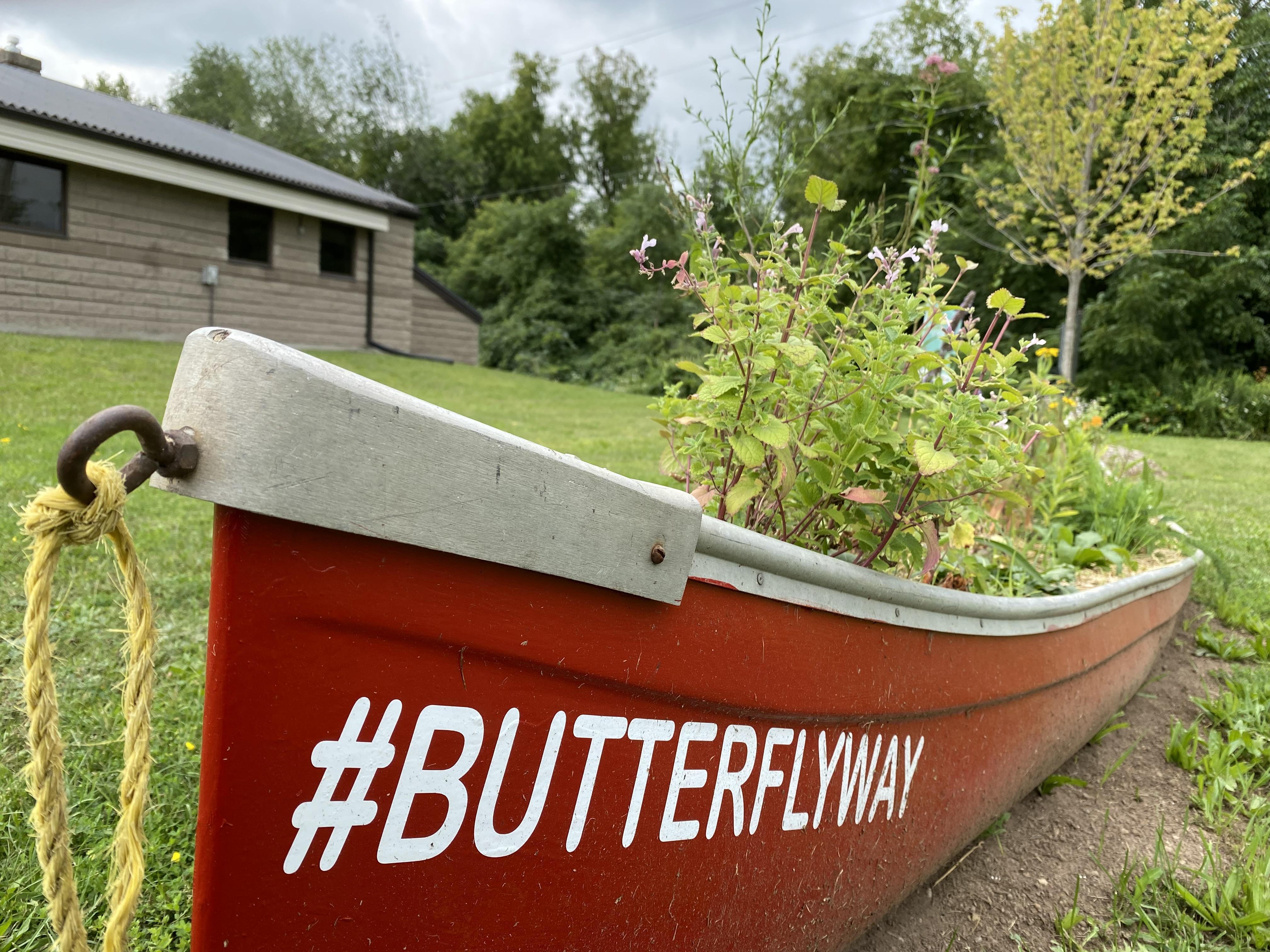 canoe pollinator garden